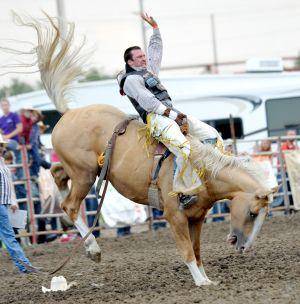 This Miller cashes checks on bucking horses