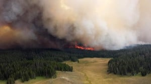 Yellowstone road reopens, fire may close it again