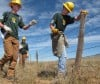 Teen crew helps BLM mark wires to protect sage grouse