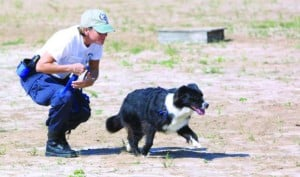 Cadaver dogs to search landfill for missing Anaconda woman