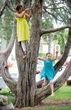 Brianne Eckhardt and Elaina Robinson climb trees