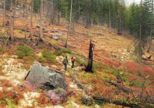 Rattlesnake Wilderness: Recreation for all just north of Missoula