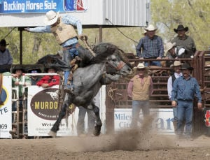 Bucking Horse Sale: They don't call it world famous for nothing
