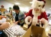 Santa joins in to help pack
