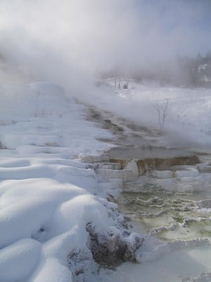 Autopsy confirms man in Yellowstone died from hypothermia