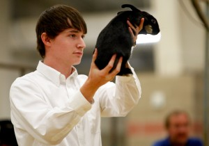 4-H, FFA kids end their fair week at the Junior Livestock sale