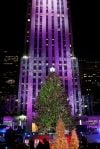 5 Free Things: NYC lit up and lovely at Christmas