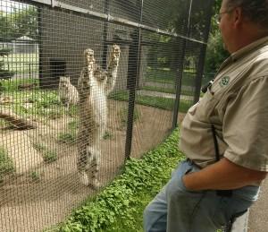 Gallery: Chahinkapa Zoo