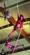 High flying aerialists