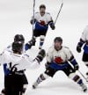 Junior Bulls win state high school hockey title