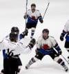 Junior Bulls win state high school hockey title