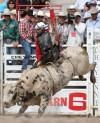 Cheyenne Frontier Days - Championships