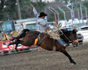 MontanaFair rodeo sets record attendance, payouts