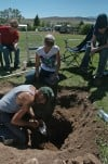 Grave search finds no remains