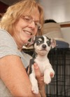Diane Stratford holds a 7-week-old Chihuahua