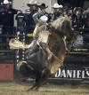 North Dakota bull rider Nathan Schaper right where he always wanted to be