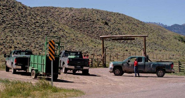 Man hospitalized after grizzly attack near cody officials for Wyoming game and fish jobs