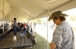 Gallery: 2014 Big Horn Basin TEA Party Picnic