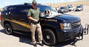 Wyoming Highway Patrol K-9 dies after being struck by semi