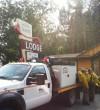 Pine Creek Cafe