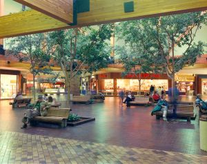 Rimrock Mall: 'A development of superlatives'