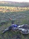 Laurel man recovering after motorcycle-deer collision on Molt Road