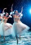 Snowflakes perform