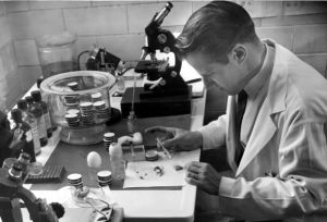 Hamilton scientist who discovered cause of Lyme disease dies