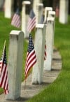 American flags line veterans' graves