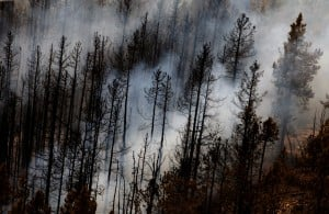 Rock Creek fire holding at 900 acres, 25 percent contained