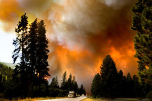 Wildfires growing increasingly dangerous and costly, expert says