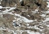 FAA, company agree to settlements over Wyoming crash