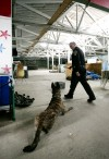 Yellowstone County Deputy Jamie Swecker and his dog Tyco