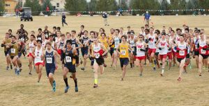 Goals checked off at NCAA West Regional cross country meet