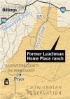 Leachman horse sale