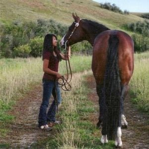 Show to benefit horse enthusiast Sunday at MetraPark