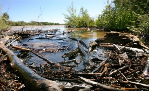 Feds say delay worsened Yellowstone River oil spill