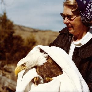 Wyoming conservationist, naturalist and bird healer dies