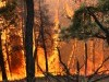 Delphia fire east of Roundup grows to 15,000 acres