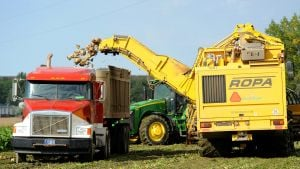Sugar Beet harvest wraps up