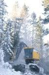 BLM Logging