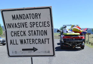 Five inspection stations catch anglers transporting live fish