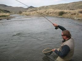 Southwest montana fishing report great fishing on for Beaverhead river fly fishing