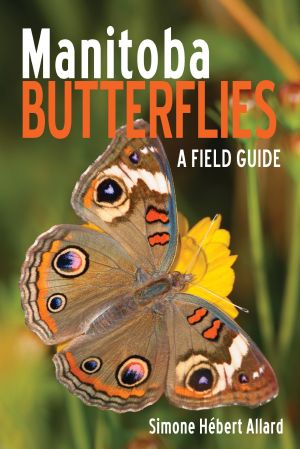 Butterfly guide sheds light on insects' biology, behavior