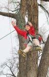 Noah Edwards climbs a tree