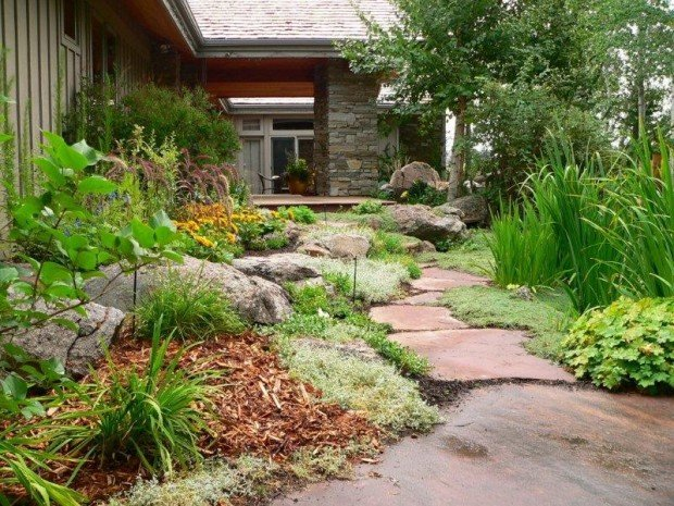 Guide Helps Homeowners Landscape Less Thirsty Lawns