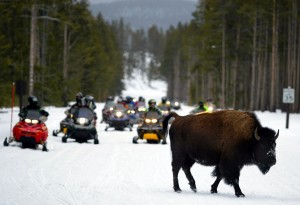 'Unguided' snowmobiles return to Yellowstone