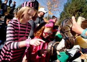 Boo at the Zoo brings out crowds of trick-or-treaters