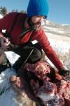 Examining the kill