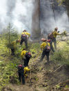 Guest opinion: Wildfire damage control should start around towns